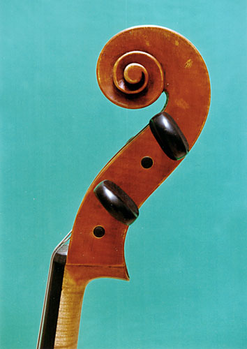 Cello - Matteo Gofriller, 2001