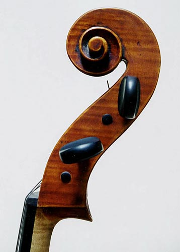 Cello - Matteo Gofriller, 2002