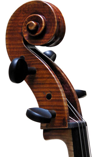 Cello - Pietro Giacomo Rogeri, 2006