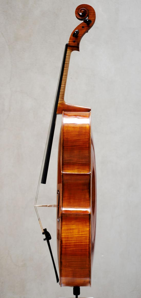 Cello - Pietro Giacomo Rogeri, 2012