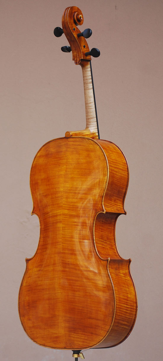 Cello - Pietro Giacomo Rogeri, 2013