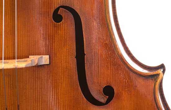 Cello - Pietro Giacomo Rogeri 736mm, 2014