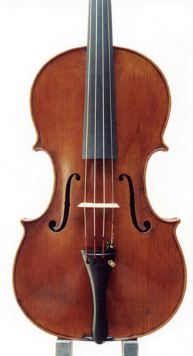 Viola - Francesco Mantegazza 408mm, 2003