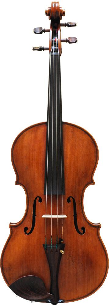 Viola Maggini